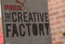 Puma Don't Take Fake